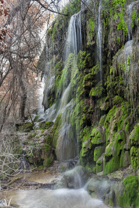 Gorman Falls, Colorado Bend State Park.